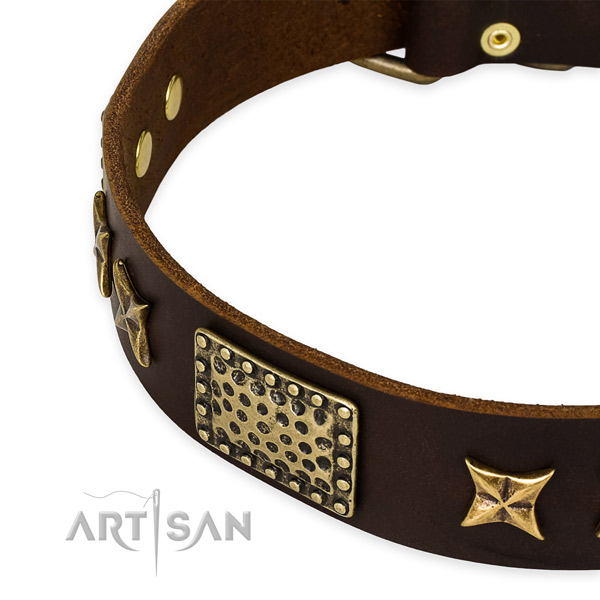 Full grain natural leather collar with corrosion proof buckle for your lovely canine