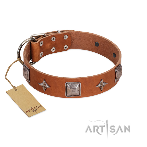 Quality genuine leather dog collar with studs for easy wearing