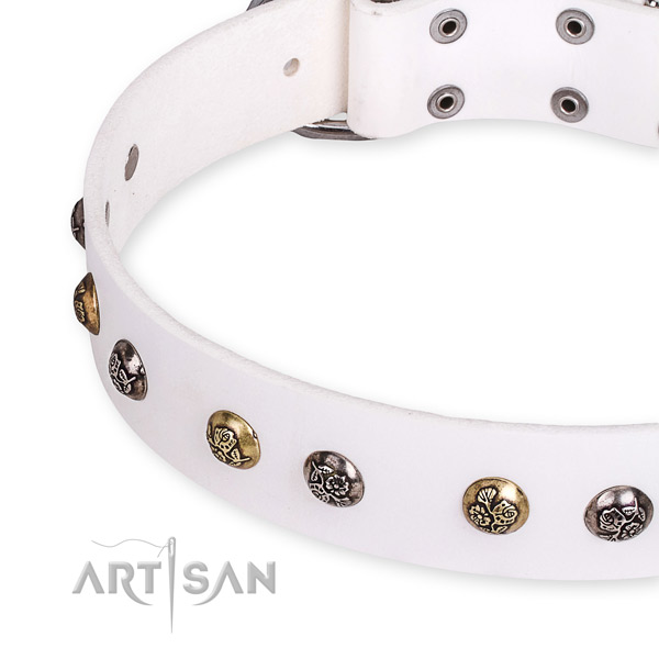 Full grain genuine leather dog collar with inimitable strong adornments
