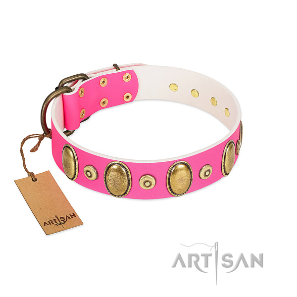 Flexible leather collar with rust-proof studs for your doggie