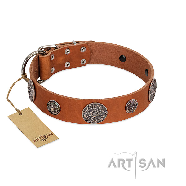 Adorned full grain genuine leather collar for your beautiful doggie