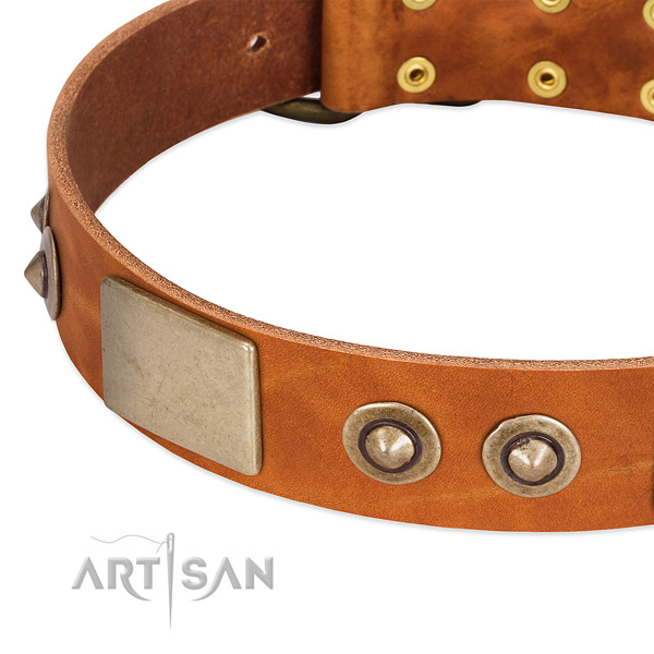Rust resistant traditional buckle on natural genuine leather dog collar for your pet