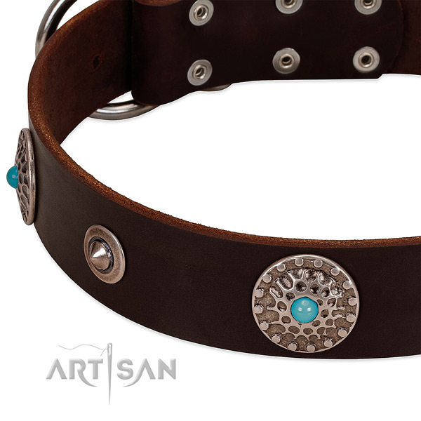Top notch collar of natural leather for your impressive doggie