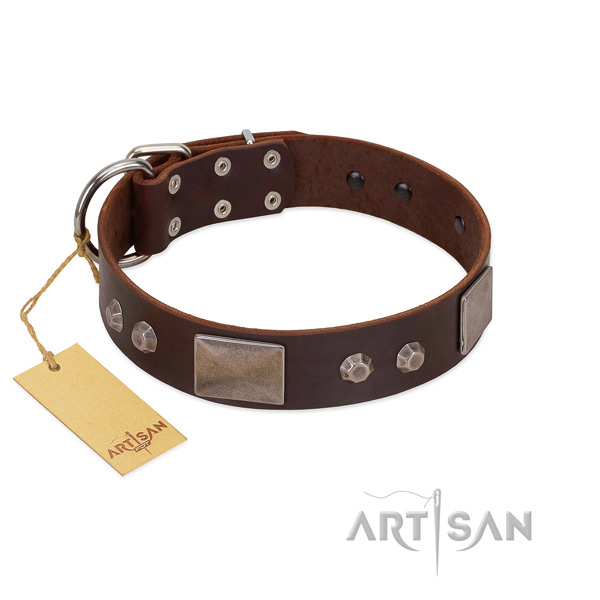 Exquisite genuine leather dog collar with durable D-ring