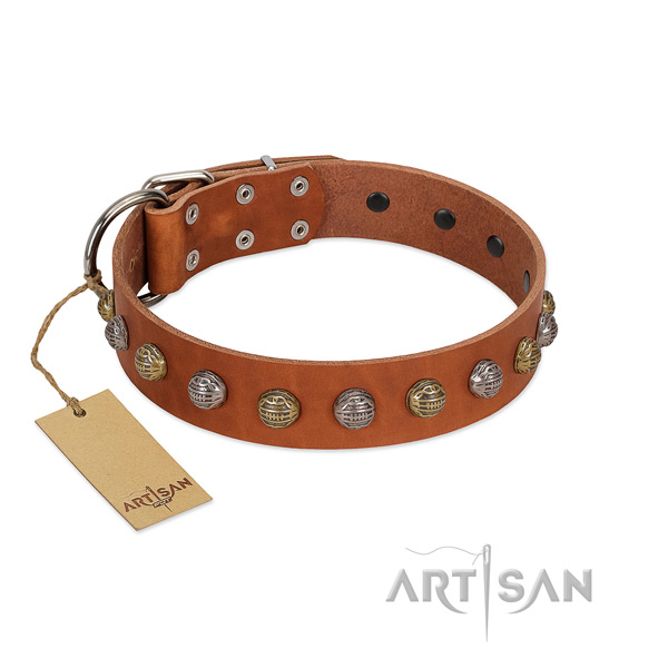 Rust-proof fittings on genuine leather dog collar for daily walking your four-legged friend