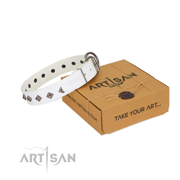Fashionable studs on natural leather dog collar for comfortable wearing