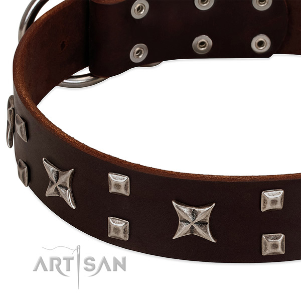 Top rate leather dog collar with adornments for walking