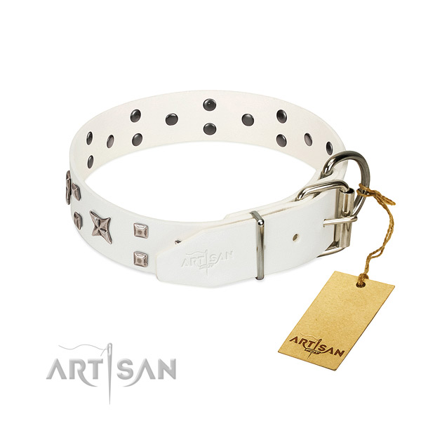 Quality full grain genuine leather dog collar with stunning studs