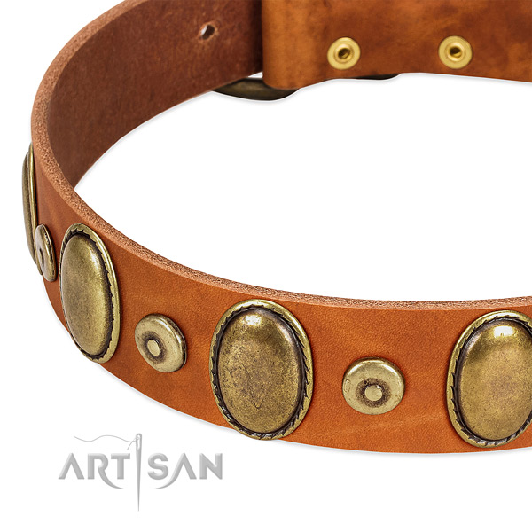 Awesome full grain natural leather collar for your handsome dog