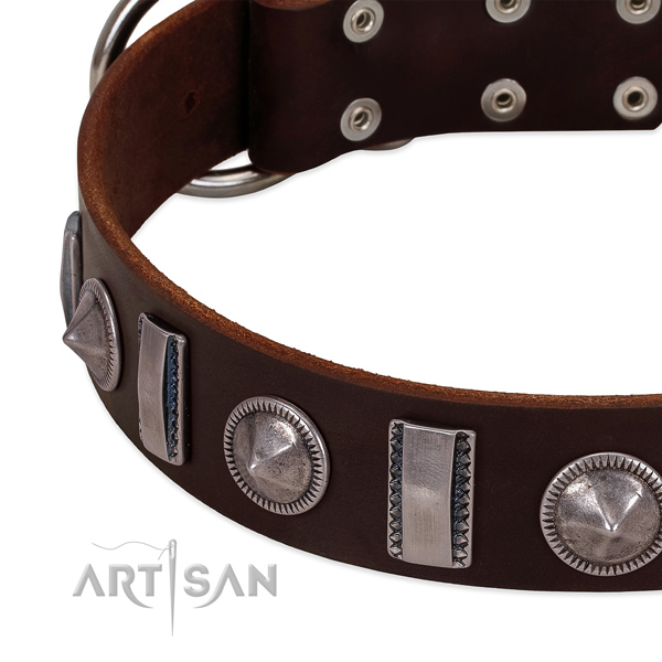 Impressive adorned natural leather dog collar for stylish walking