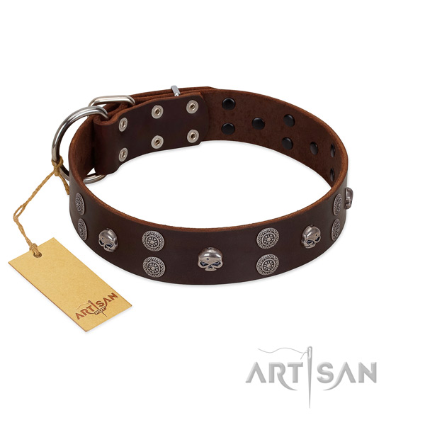 Everyday use adorned leather collar for your four-legged friend