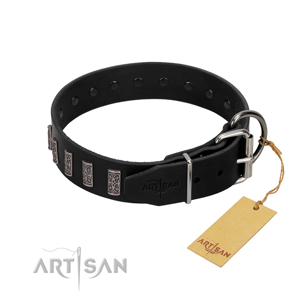 Corrosion proof fittings on full grain leather dog collar for everyday walking your doggie