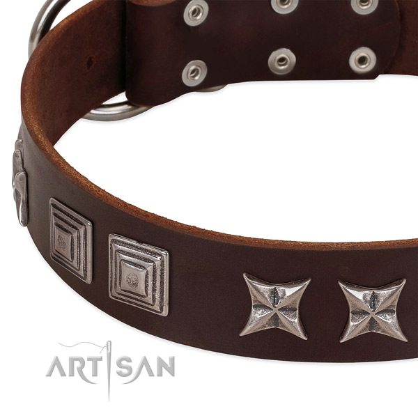 Daily use full grain genuine leather dog collar with top notch decorations