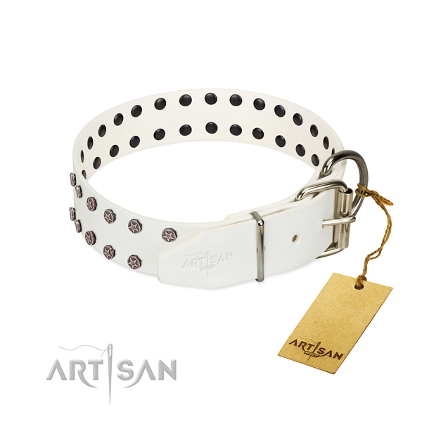Rust resistant D-ring on leather dog collar for easy wearing