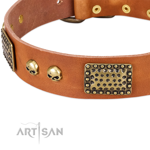 Durable D-ring on natural leather dog collar for your doggie