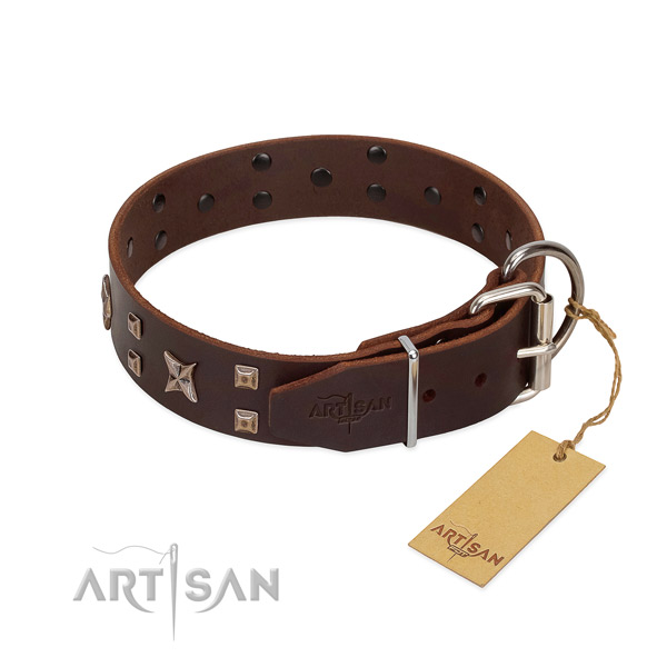 Natural leather dog collar with inimitable decorations