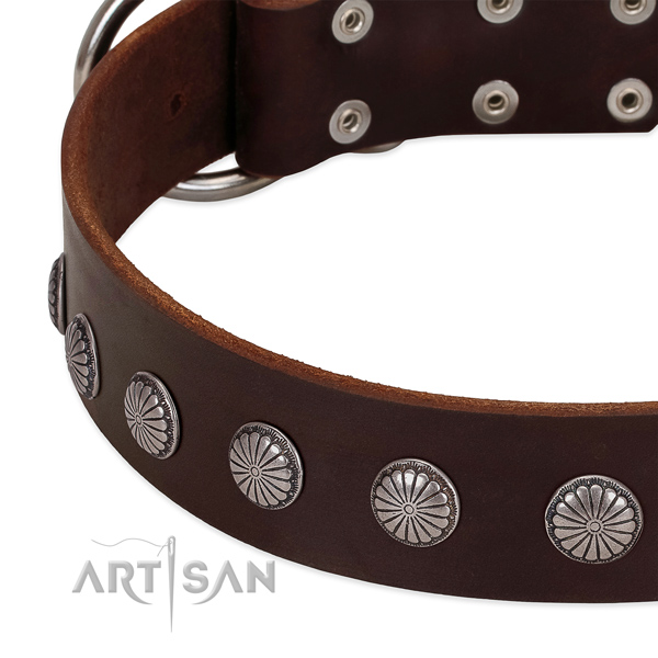 Soft to touch genuine leather dog collar with embellishments for easy wearing