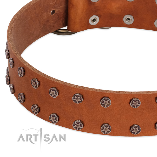 Quality natural leather dog collar with decorations for your canine