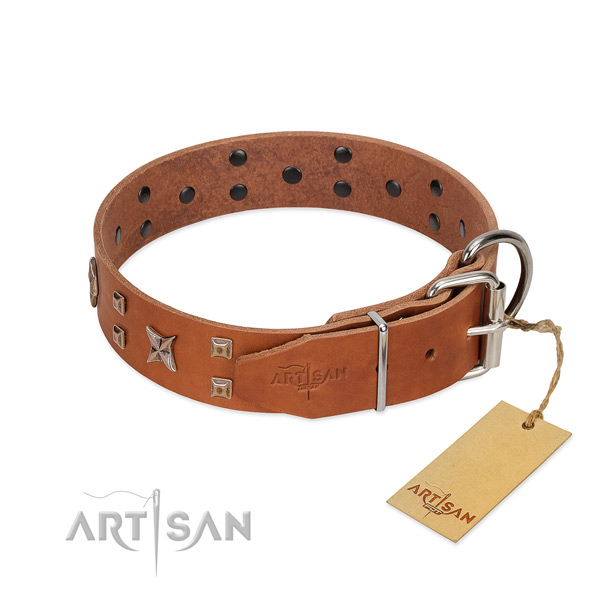 Best quality natural leather dog collar for your beautiful dog