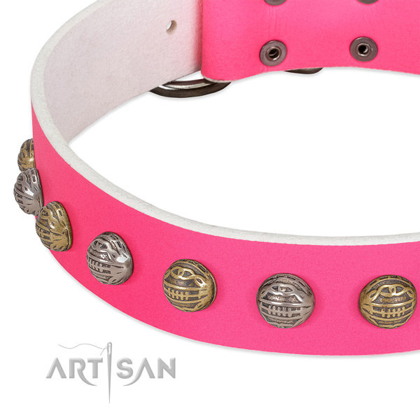 Rust-proof hardware on leather collar for basic training your canine