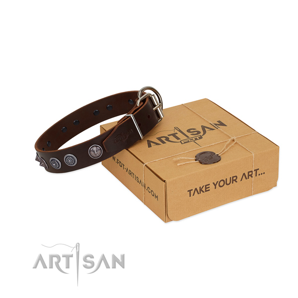 Corrosion resistant hardware on full grain leather dog collar for stylish walking your dog