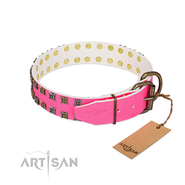 Full grain genuine leather collar with remarkable adornments for your canine