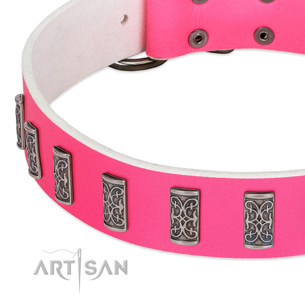 Exquisite genuine leather collar for your four-legged friend walking