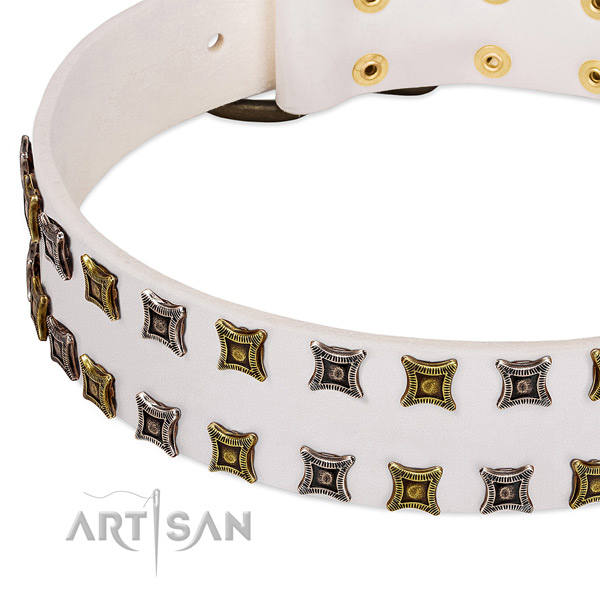 Durable leather dog collar for your impressive four-legged friend