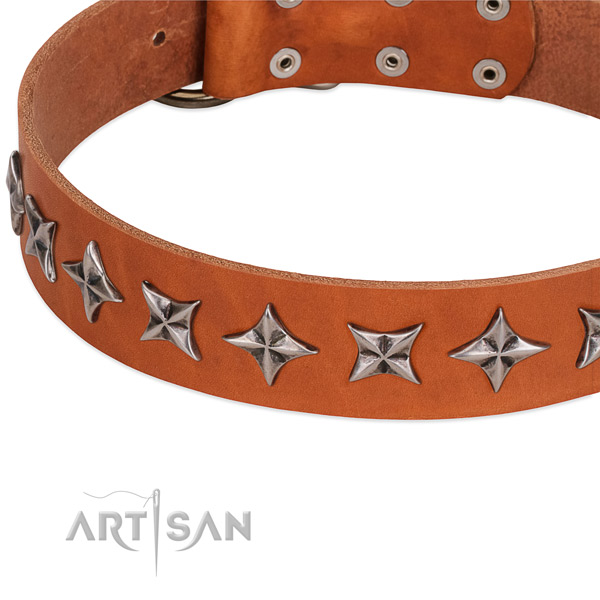 Handy use adorned dog collar of durable leather