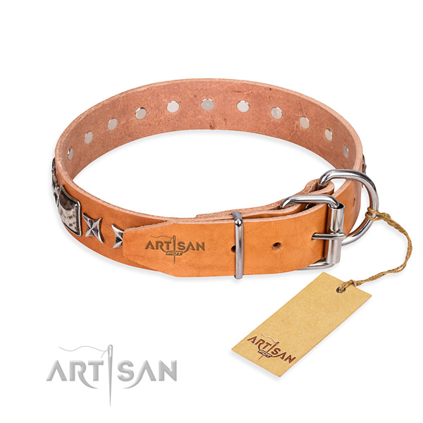Quality decorated dog collar of natural leather