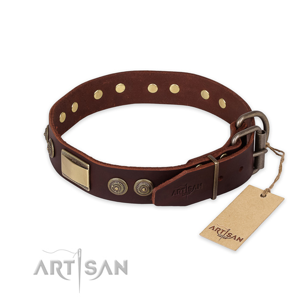 Rust-proof D-ring on full grain natural leather collar for basic training your pet