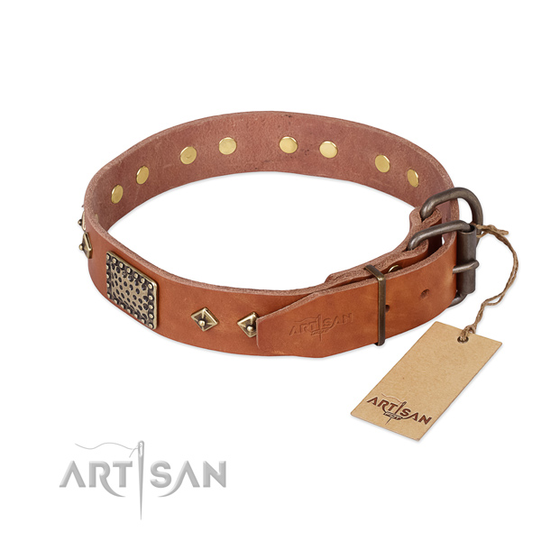 Natural leather dog collar with strong buckle and decorations