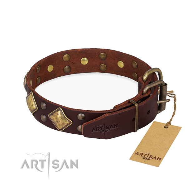 Natural leather dog collar with unusual strong embellishments