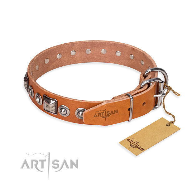 Top notch full grain leather dog collar created for walking