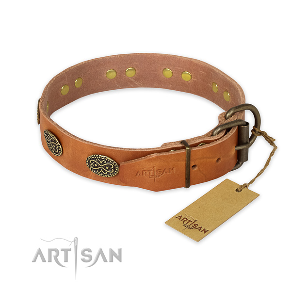 Corrosion proof traditional buckle on full grain genuine leather collar for basic training your pet