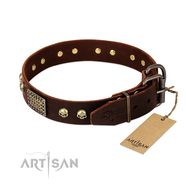 Rust-proof embellishments on daily walking dog collar