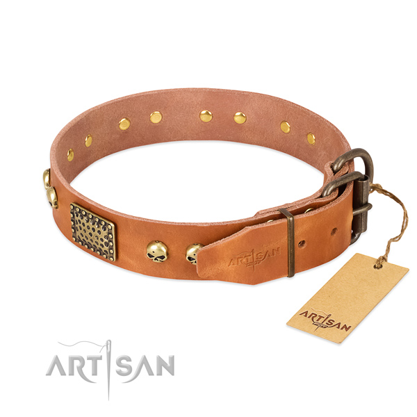 Rust-proof traditional buckle on comfortable wearing dog collar