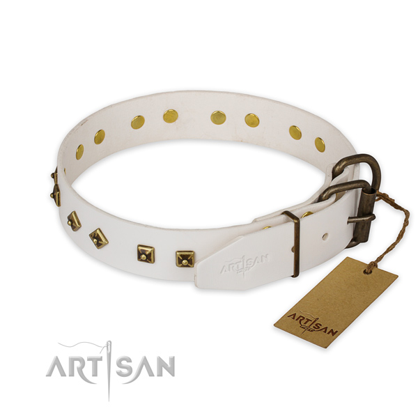 Rust resistant hardware on natural genuine leather collar for stylish walking your dog