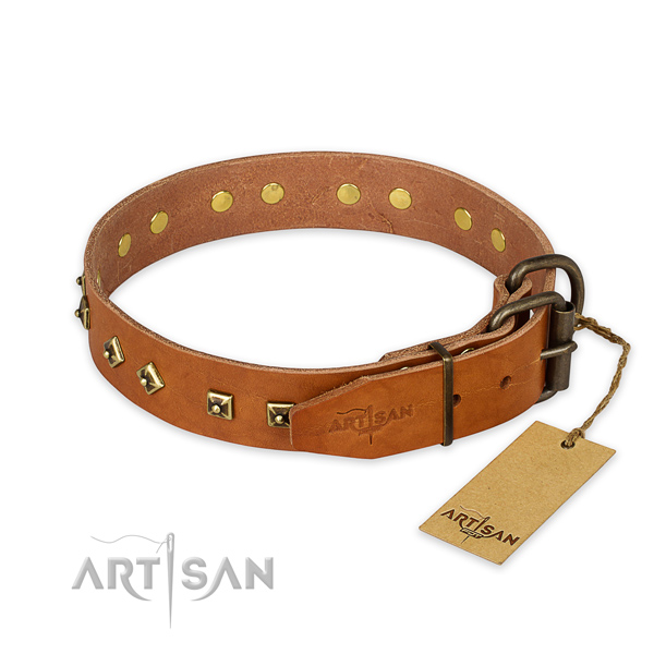 Reliable traditional buckle on full grain genuine leather collar for walking your four-legged friend