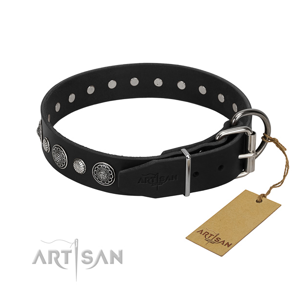 Durable leather dog collar with stylish adornments