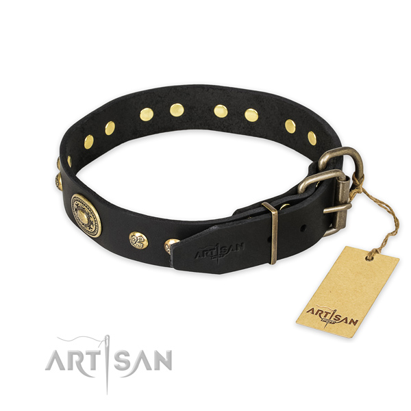Durable buckle on full grain genuine leather collar for stylish walking your doggie