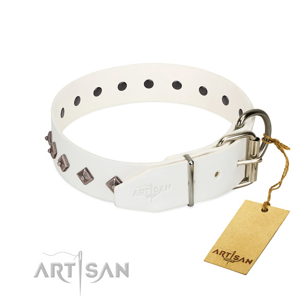 Remarkable decorations on leather collar for everyday walking your pet