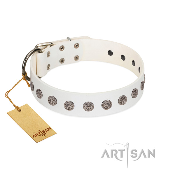 Extraordinary embellishments on full grain leather collar for everyday use your four-legged friend