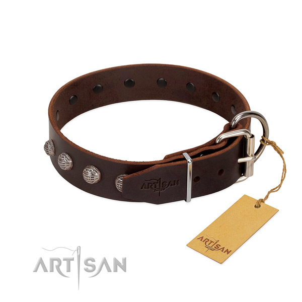 Convenient dog collar handmade for your impressive canine