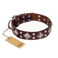 """King of Grace"" FDT Artisan Stylish Leather Cane Corso Collar with Old Silver-Like Plated Decorations"