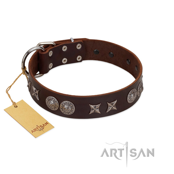 Best quality full grain natural leather dog collar for your handsome canine