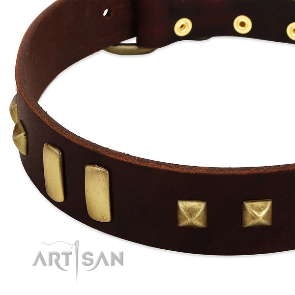 Reliable full grain natural leather dog collar with decorations for daily use