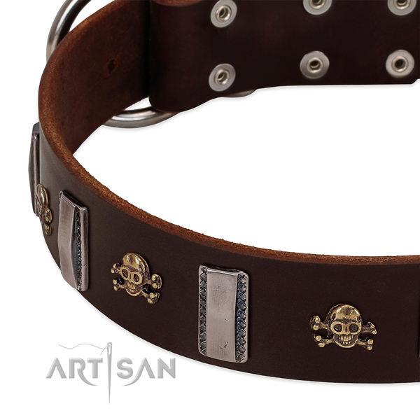 Perfect fit full grain natural leather collar with adornments for your four-legged friend