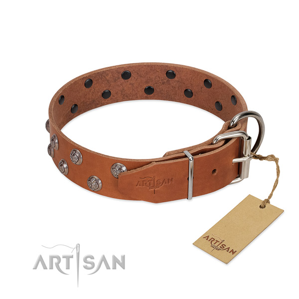 Strong traditional buckle on embellished full grain genuine leather dog collar