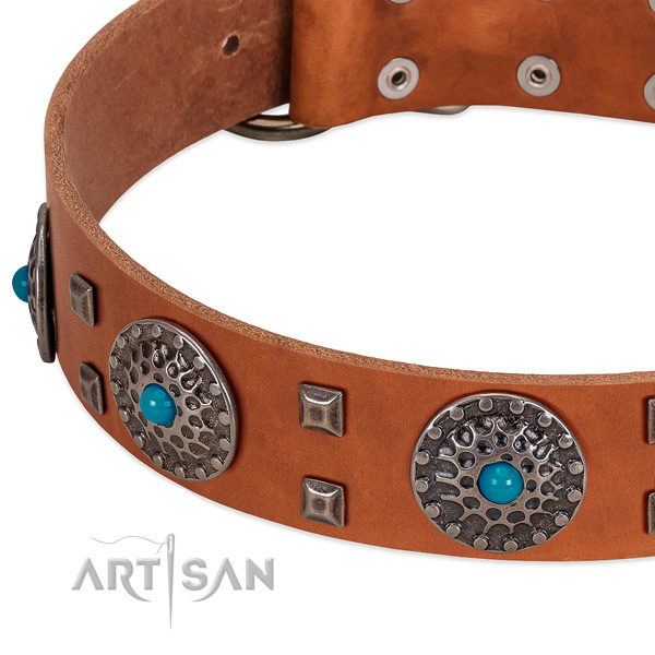 Top notch genuine leather dog collar with incredible studs